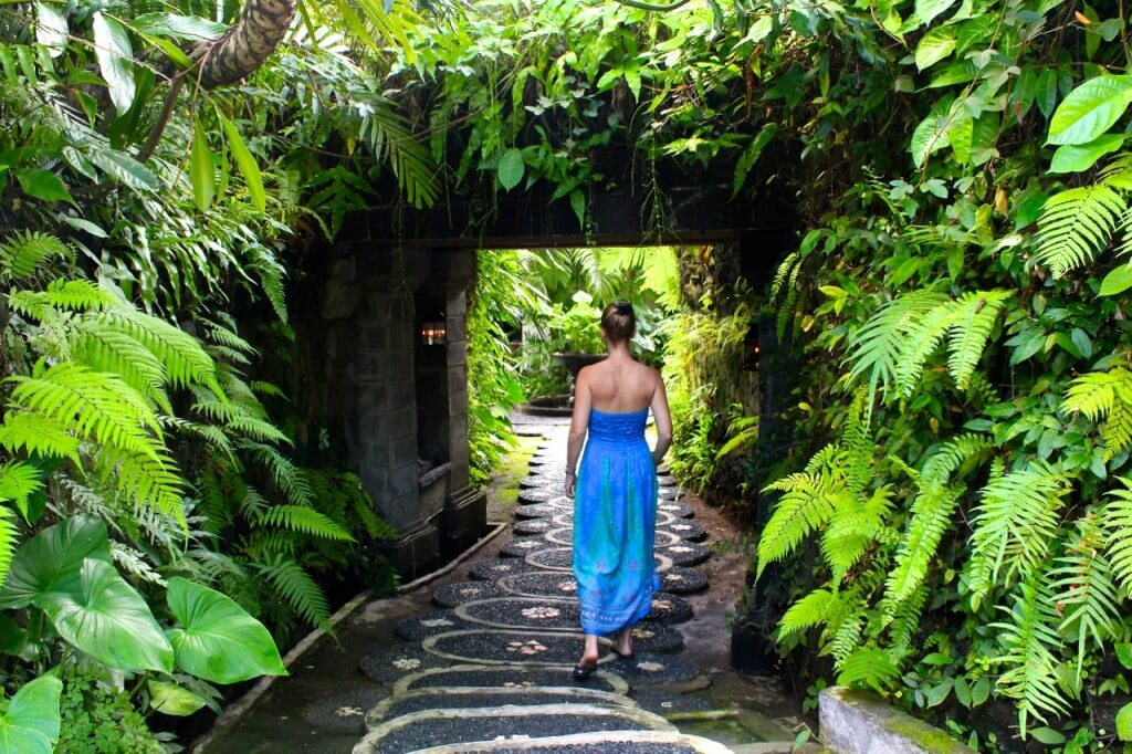 bali wellness retreat