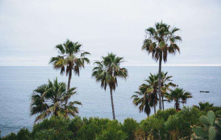 cali beach2-1