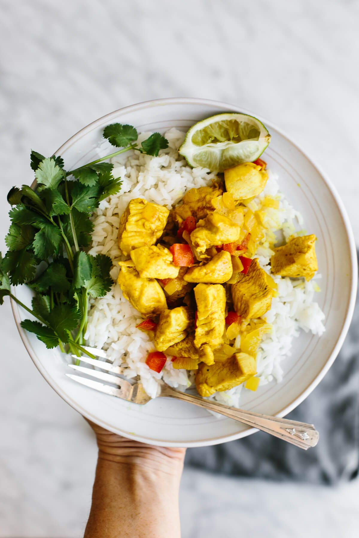 A serving of coconut curry chicken on a plate.