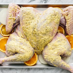 A spatchcock turkey flat on a baking tray, ready to be cooked.