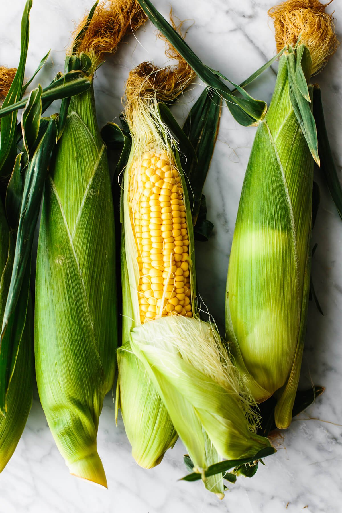 Fresh ears of corn for grilled corn on the cob